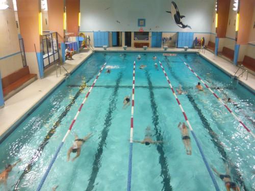 zone de confort,ithaque coaching,changer ses habitudes,piscine,natation,vacances,sport,loisirs