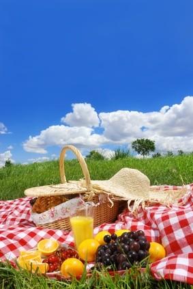Fotolia_© lily_picnic.jpg