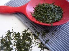thé,georges cannon,olivier scala,lydia gautier,eric trochon,jardin jardins,dégustation,boissons,salon de thé