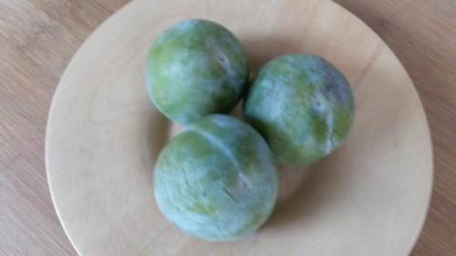 prune,fruits d'été,fruits d'automne, reine-claude,mirabelle,tarte aux prunes,confiture de prune,compote de prunes,cuisiner les prunes