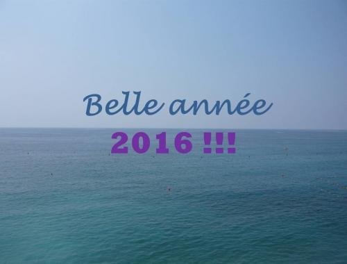 Voeux_2016_blog.jpg
