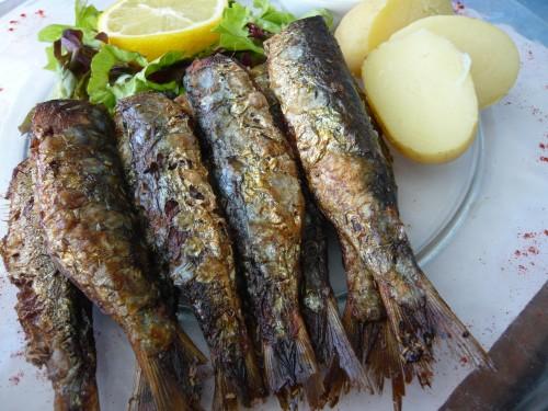 bretagne, poisson, fruits d emer, crustacés, produits de la mer, quiberon, portivy, petit hotel du grand large, caramels henri leroux, compagnie bretonne du poisson