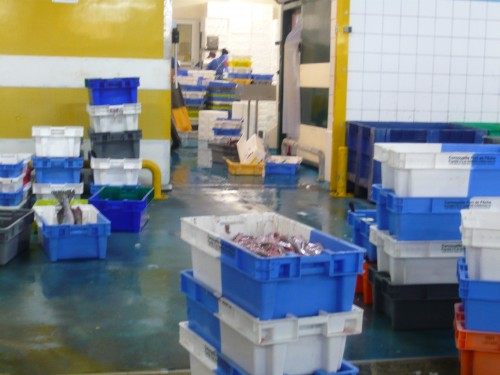pêche,pêcheurs,poisson,mer,haliotika,st guenole,le guilvinec,port