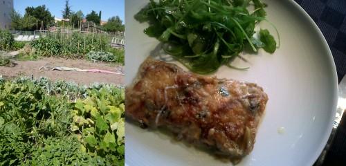 cuisine italienne,pâtes,aubergines parmesane,girolles,alain ducasse