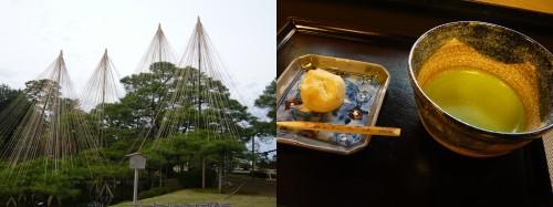 japon,thé vert,sencha,matcha,cérémonie du thé,cha ginza