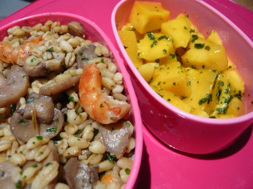 alimentation,nutrition,blé,champignons,mangue,cuisine du placard,crevettes,bento,lunchobox,déjeuner au bureau